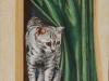 Le chat au rideau vert