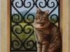 Chat à la fenêtre II